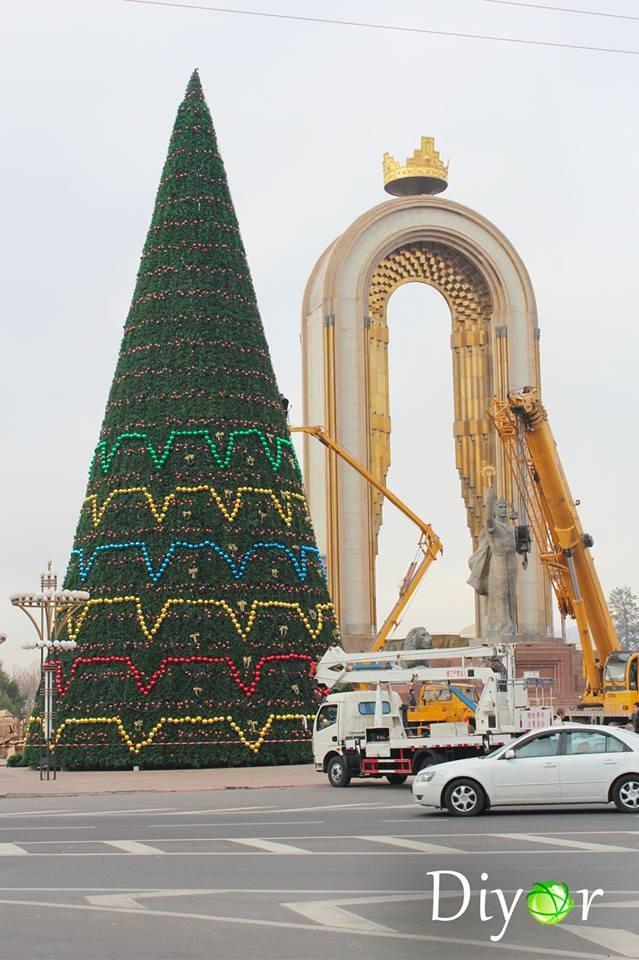 Елка Сомони Душанбе фото
